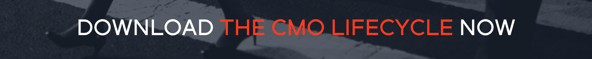 download cmo report