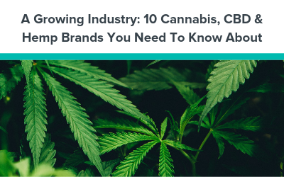 A Growing Industry: 10 Cannabis, CBD & Hemp Brands You Need To Know About